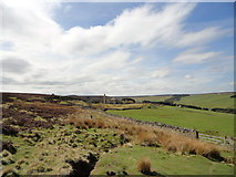 NY9648 : View from the roadside near Abbey Weathers by Robert Graham
