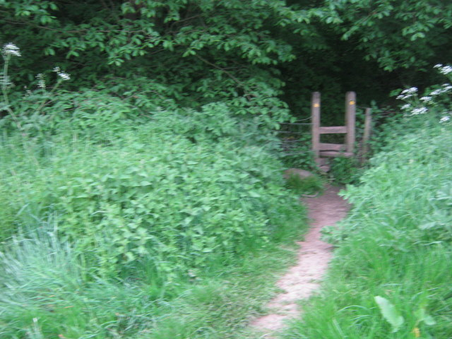 Stile for The Teesdale Way leading into Dinsdale Wood