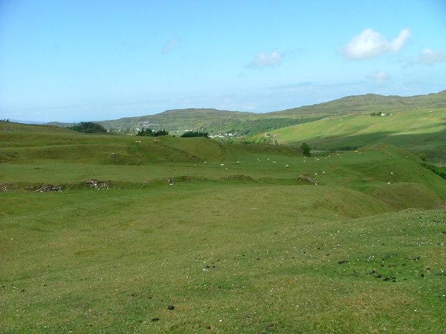 Sheep grazing above Fairy Glen