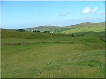 NG4162 : Sheep grazing above Fairy Glen by Dave Fergusson