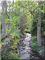 NY9442 : Stotfield Burn by Mike Quinn