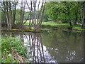 NZ1031 : Bedburn mill pond by brian clark
