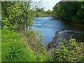 NS3978 : Weir on the River Leven by Lairich Rig