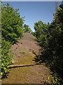 ST0411 : Gravel heap on the former A38 by Derek Harper