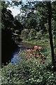SH5836 : Portmeirion, lake and gardens by Christopher Hilton