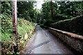 SJ4034 : Sandy Lane, Ellesmere by Jeff Buck