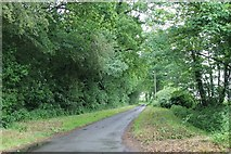 TG1301 : Lower Spinks Lane, near Wymondham by J.Hannan-Briggs