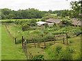 TQ4476 : Vegetable garden at Woodlands Farm by Stephen Craven
