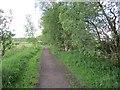 NS6376 : Blane Valley Railway by Richard Webb