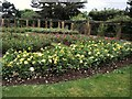 SZ6598 : Rose Garden, Southsea by Paul Gillett