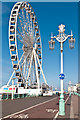 TQ3103 : The Brighton Wheel and a lamppost by Ian Capper