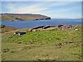 NG1650 : Sheepfold above Loch Pooltiel by Richard Dorrell
