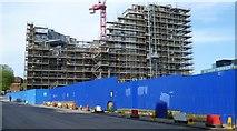 NT2572 : Quartermile Development construction, Chalmers Street by kim traynor