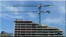 NT2572 : Quartermile Development cranes by kim traynor