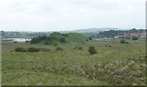 NU2409 : Looking across Alnmouth Dunes to Church Hill by Russel Wills