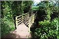SO4813 : Footbridge on Offa's Dyke Path by Philip Halling