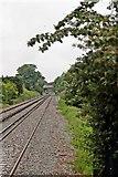 SJ2992 : Green Lane road bridge, Wallasey by El Pollock