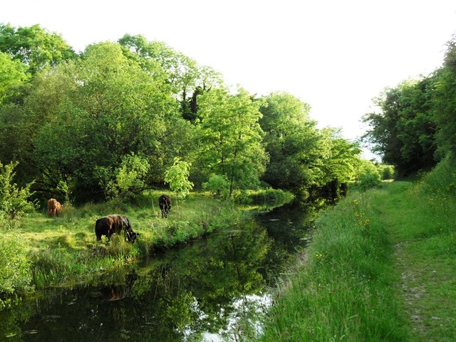 Grand Canal in Goatstown, Co. Kildare