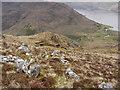 NG8510 : Slope descending from Beinn Bhuidhe by Trevor Littlewood