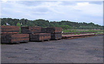 TM4599 : Railway yard with sleepers and track by Roger Jones