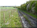 SP1345 : Bridleway to Broad Marston by Michael Dibb