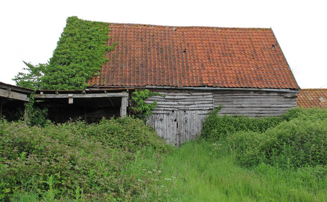 Grown over old barn