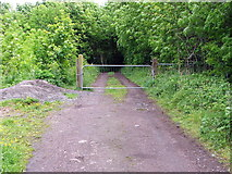 NZ3071 : Path leading to some stables and the new A186 by pass by Christine Westerback