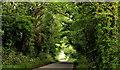 J5371 : The Cunningburn Road near Newtownards (2) by Albert Bridge