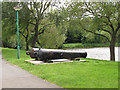 TQ4679 : Cannon at Birchmere Lake by Stephen Craven