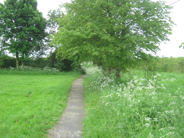 Footpath from Quarrington Hill towards Kelloe