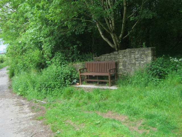 Seat at the southern edge of Coxhoe Wood