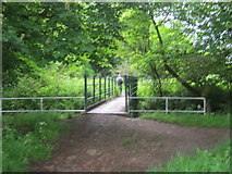 NZ3335 : Footbridge over Coxhoe Beck by peter robinson