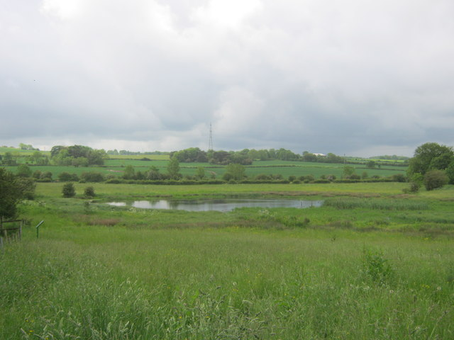 Coxhoe Quarry Pond