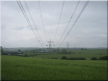 NZ3535 : Transmission lines seen from the northern perimeter of Raisby Quarry by peter robinson