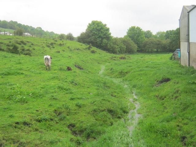 Unnamed watercourse in Kelloe