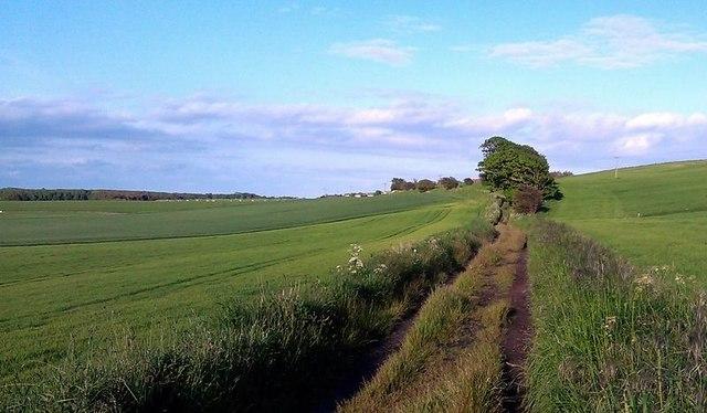 Road to Grangehill