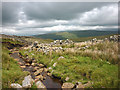 SD6985 : Ruined sheepfold, Blea Gill by Karl and Ali