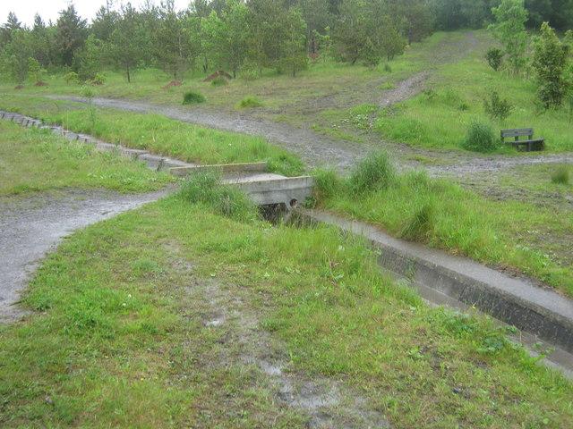 Footbridge for permissive path over drainage channel in Kelloe Plantation
