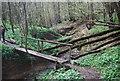 TQ8932 : Footbridge over Tilder Gill by N Chadwick