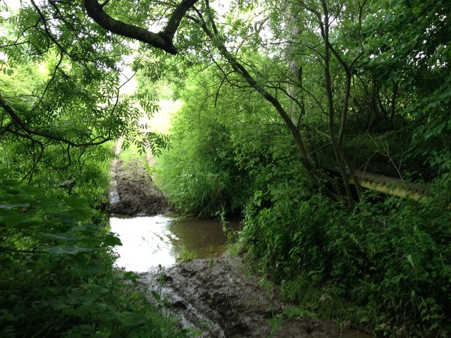 Bridleway Ford on the Eye Brook at Tugby Wood