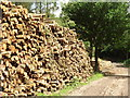 TQ1049 : Log Stacks by Colin Smith