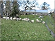 SN9665 : Glyn Farm by David Purchase