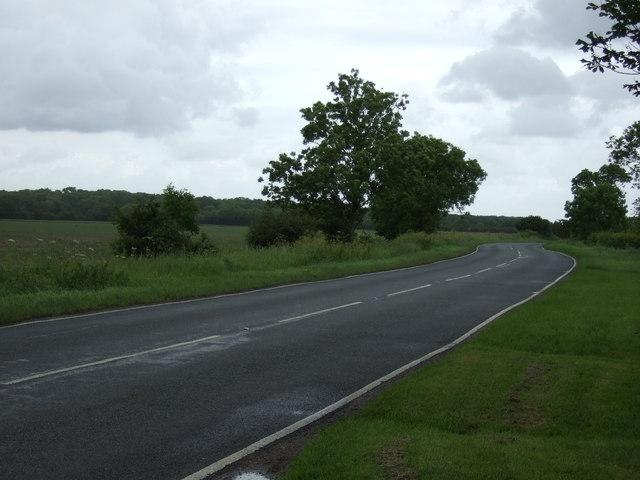Road towards Monk's Wood