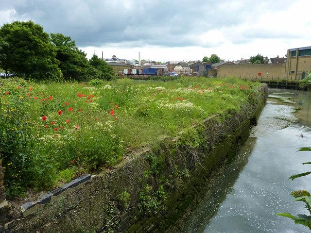 Ordnance Wharf and Faversham Creek