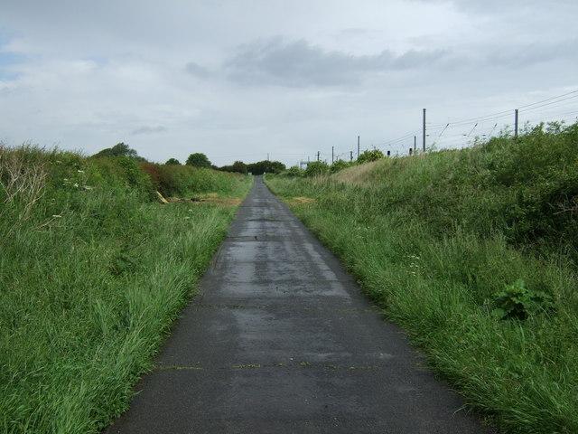 Lane heading north towards Holme