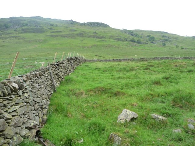 Field near Boredale Head