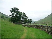 NY4116 : Bridleway approaching Boredale Head by Christine Johnstone