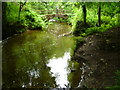 N7897 : The Cabra River: Dun na Ri Forest Park by D Gore