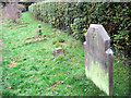 TL1706 : The Grave Stones in Hill End Hospital Cemetery, St Albans by Chris Reynolds