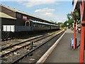 TQ8833 : Tenterden Town Station by Paul Gillett